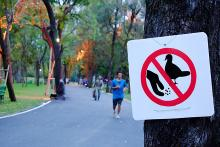 A park where people are walking and a sign on a tree that indicates not to feed birds