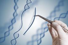 Stock Image representative of Gene Modification