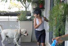 Caesar the dog on the left playing with an autistic boy in shorts and vest